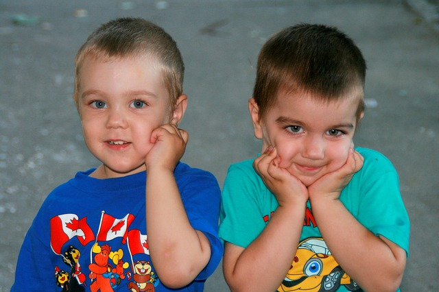 brothers-835174_640